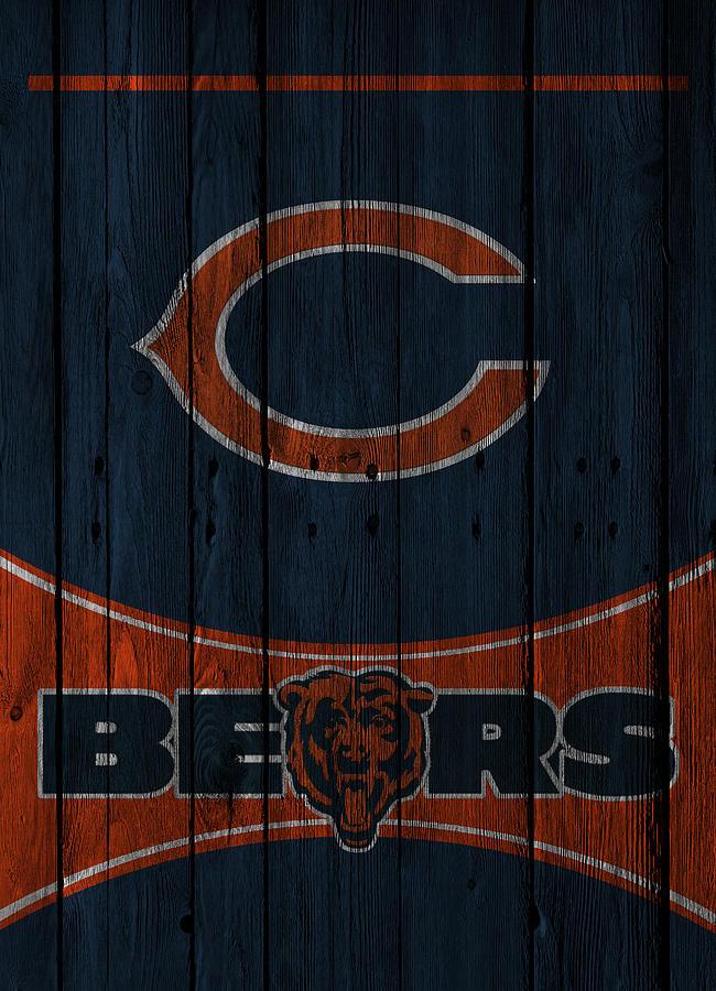 Bears Photograph - Chicago Bears by Joe Hamilton