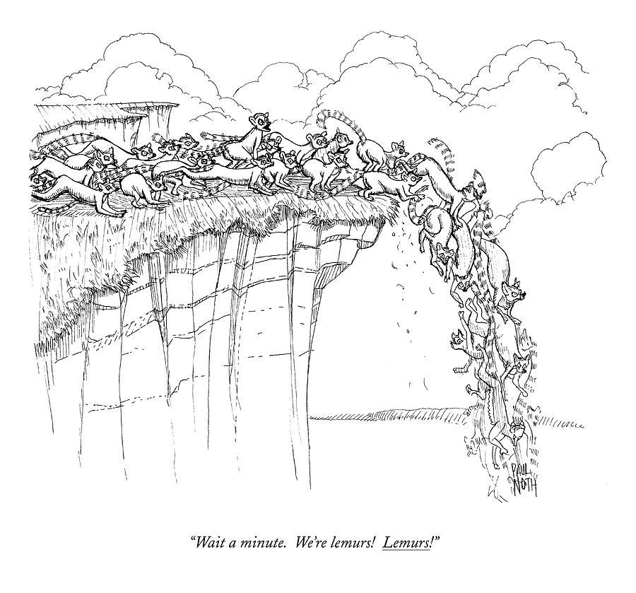 Wait A Minute.  Were Lemurs!  Lemurs! Drawing by Paul Noth