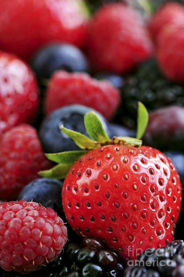 Berry Photograph - Assorted Fresh Berries by Elena Elisseeva