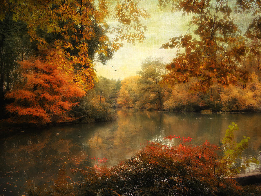 Autumn Photograph - Autumn Afternoon  by Jessica Jenney