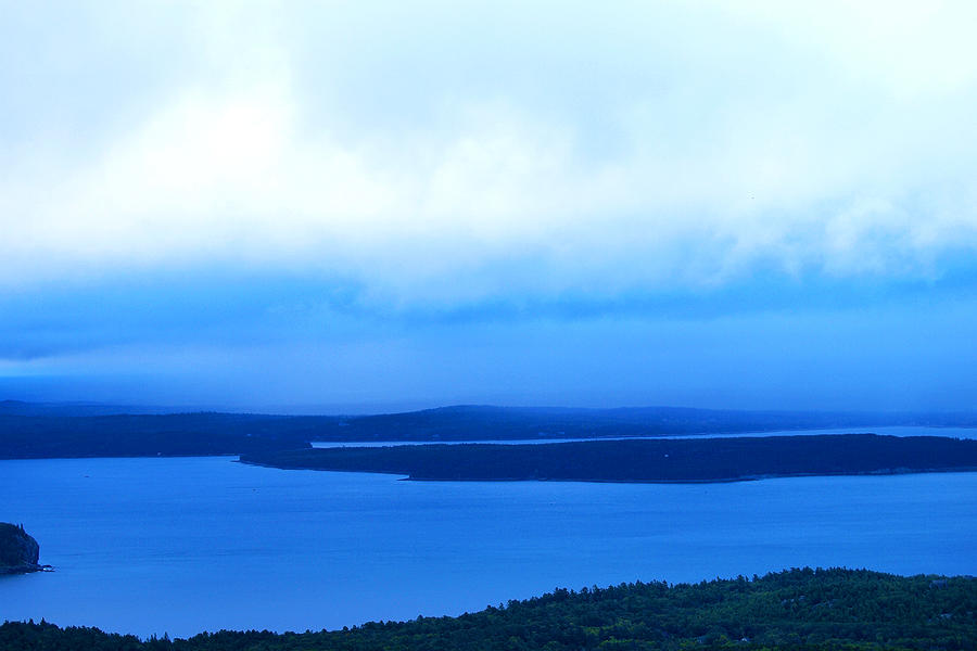 Bird Painting - Birds-eye View From Cadillac Mountain Acadia National Park by Paul Ge