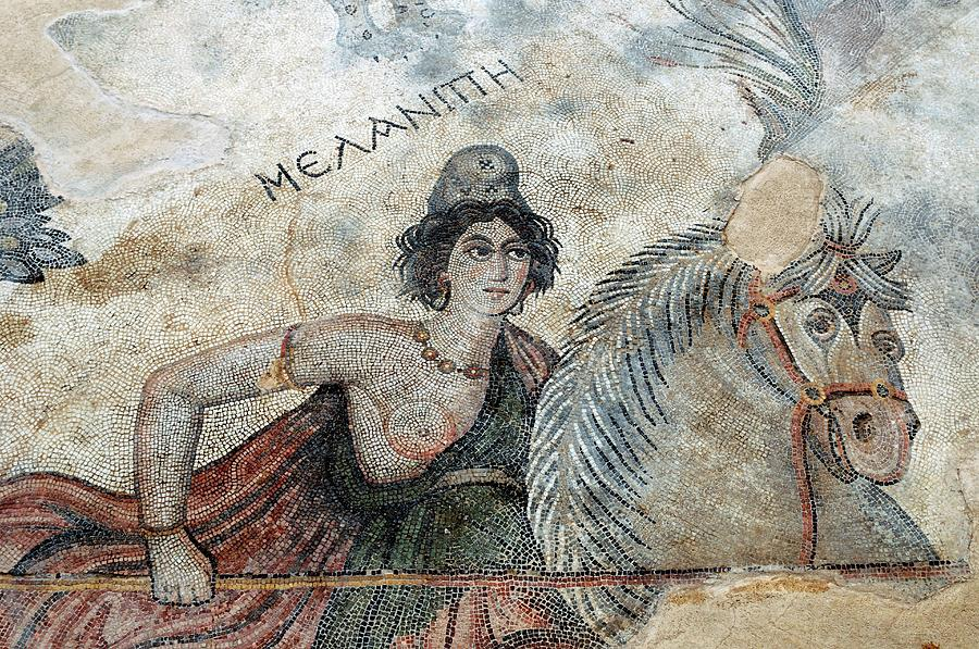 Animal Photograph - Byzantine Mosaic by Pasquale Sorrentino/science Photo Library