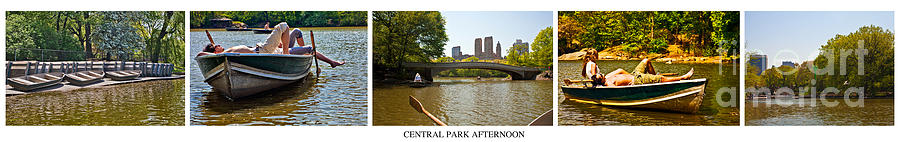 Central Park Photograph - Central Park Afternoon by Madeline Ellis