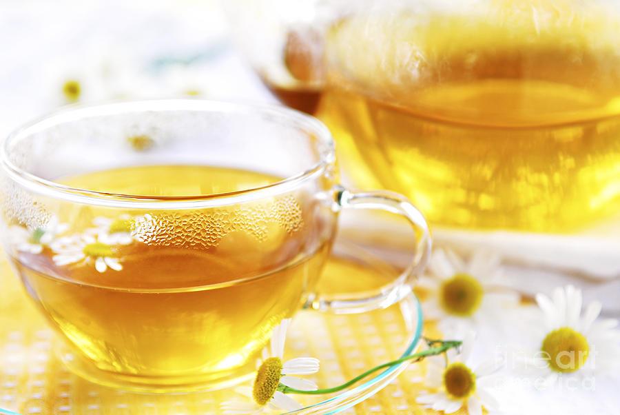Camomile Photograph - Chamomile Tea by Elena Elisseeva