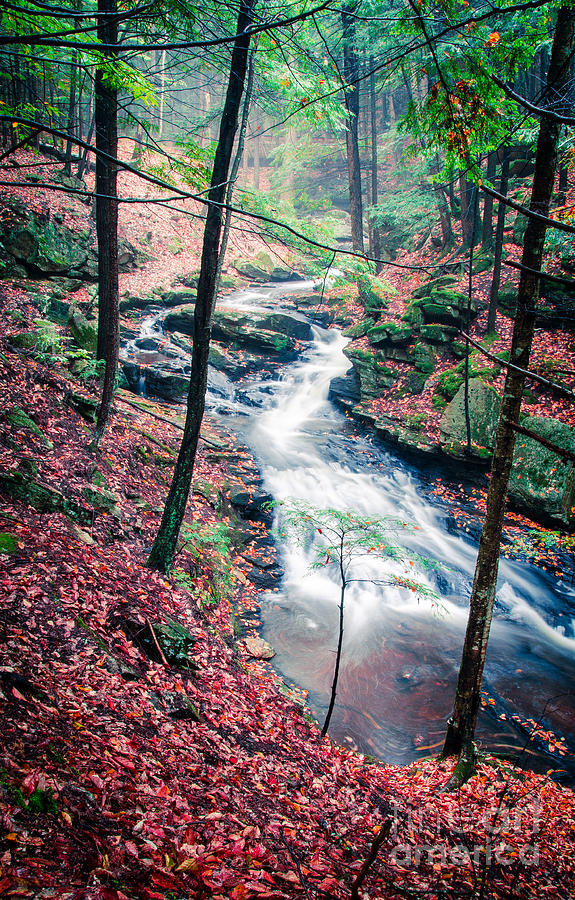 Chesterfield Photograph - Chesterfield Gorge New Hampshire by Edward Fielding