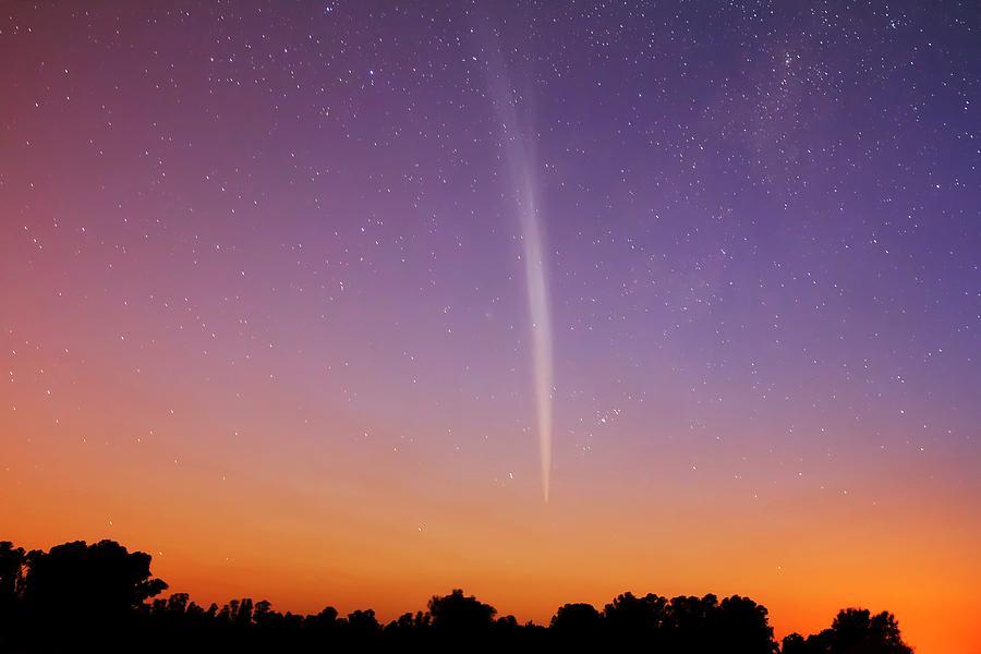 Comet Lovejoy Photograph - Comet Lovejoy by Luis Argerich