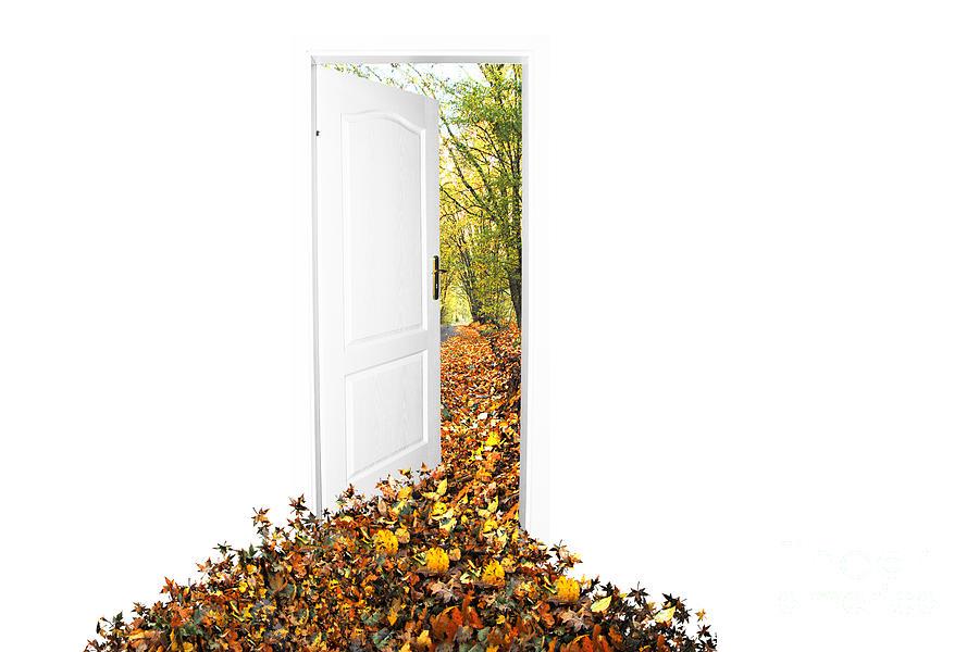 Autumn Photograph - Door To New World by Michal Bednarek