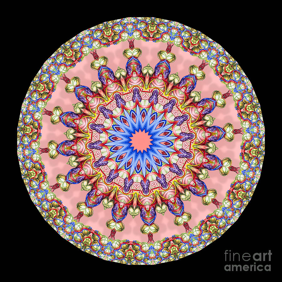 Abstract Photograph - Kaleidoscope Anatomical Illustrations Seriesi by Amy Cicconi