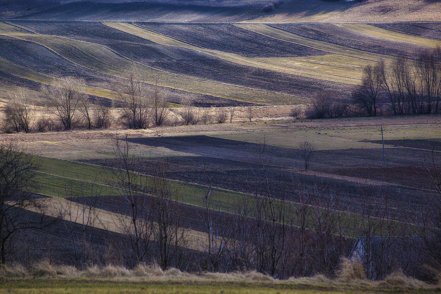 Landscape Photograph - Landscape by Anna Gora
