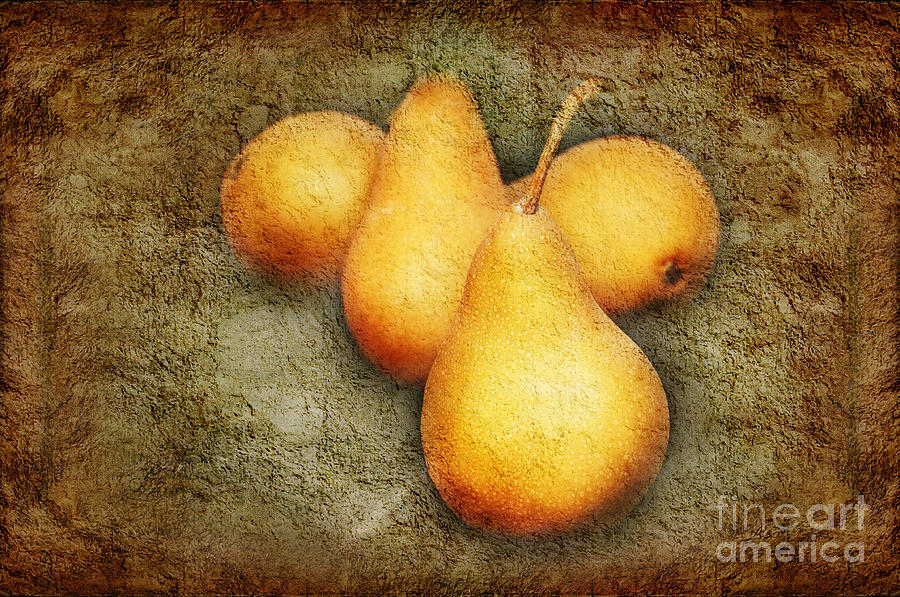 Pear Photograph - 4 Little Pears Are We by Andee Design