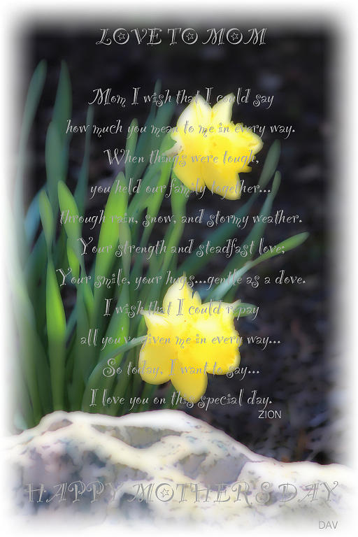 Holiday Card Photograph - Mothers Day Card by Debra     Vatalaro