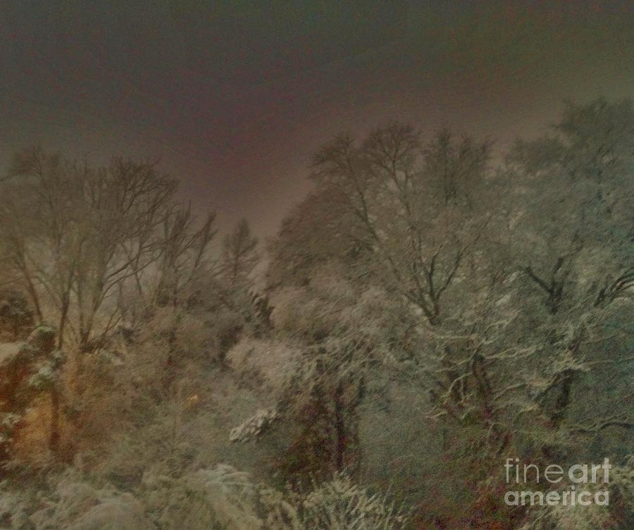 Snow Photograph - Snowy Night by Janice Spivey