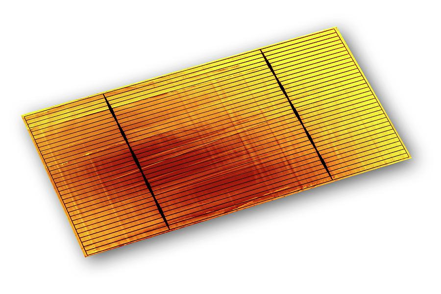 Cell Photograph - Solar Cell by Alfred Pasieka