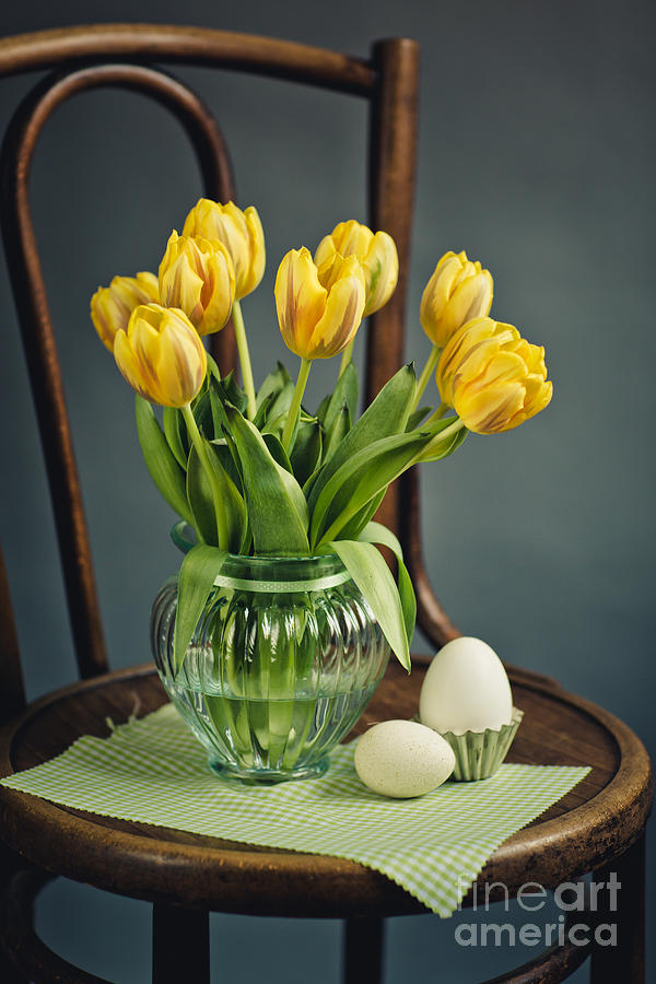 Still Life With Yellow Tulips Photograph