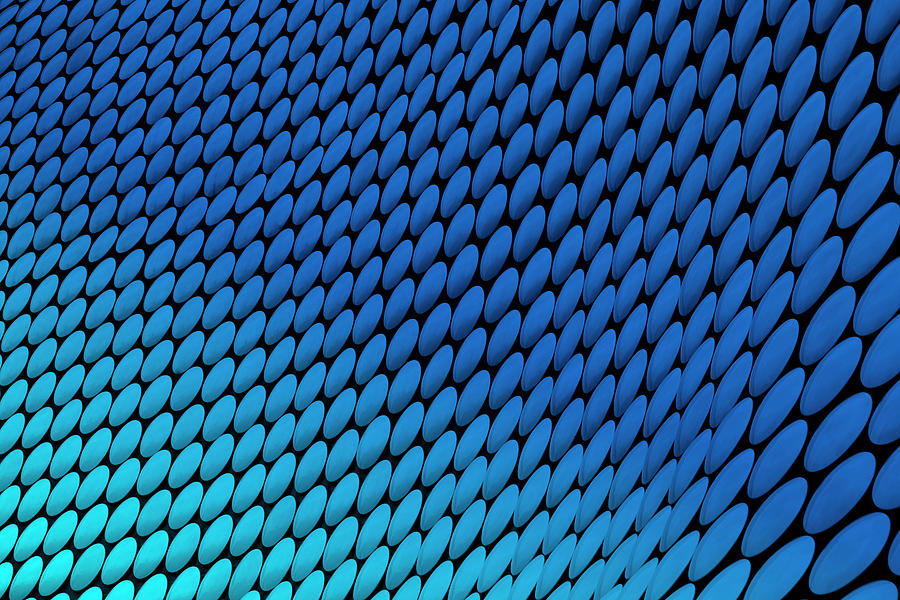 Study Of Patterns And Colours Photograph by Roland Shainidze Photogaphy