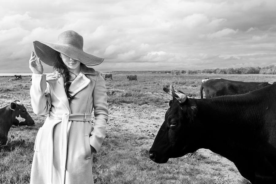 Cow Photograph - Untitled 4 by Mikhail Potapov