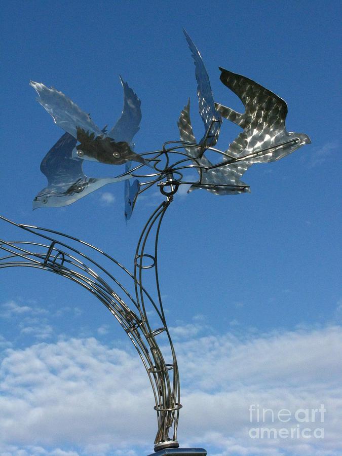Whirlybird Photograph - Whirlybird by Peter Piatt