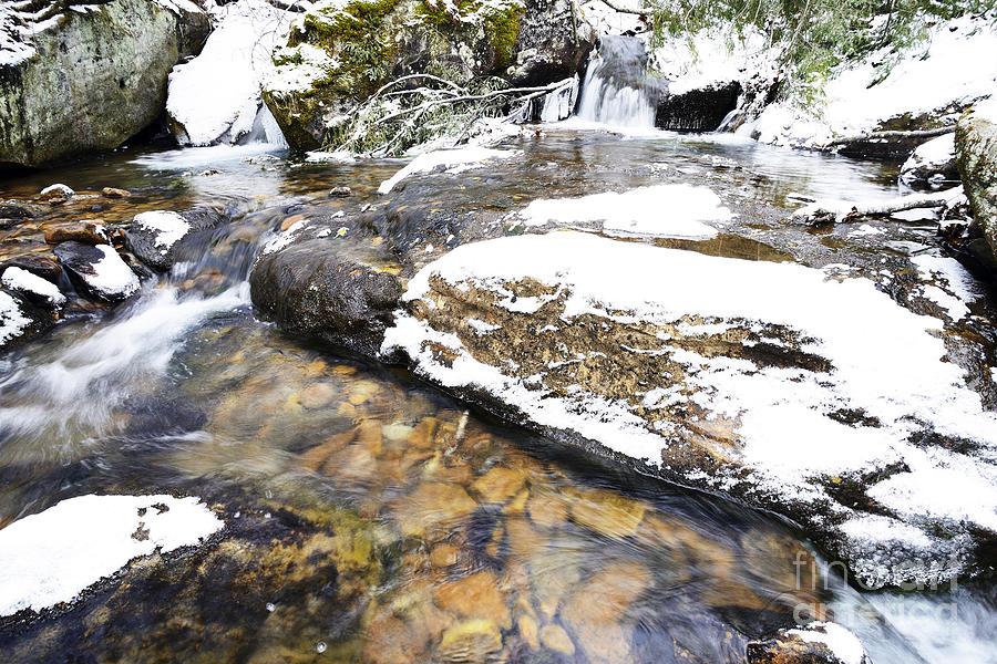 Winter Photograph - White Oak Run In Winter by Thomas R Fletcher
