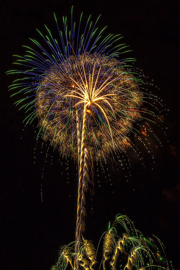 4th Of July Photograph - 4th July #13 by Diana Powell