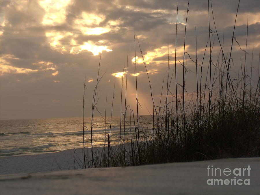 Beach Photograph - Alone In Heaven Again by Craig Calabrese