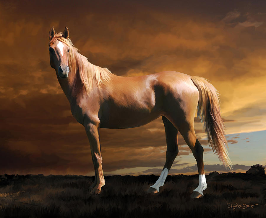 Horse Digital Art - 5. Fancy by Sigrid Van Dort
