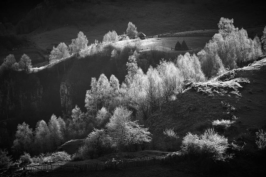 Romania Photograph - Fundatura Ponorului by Cristian Lee