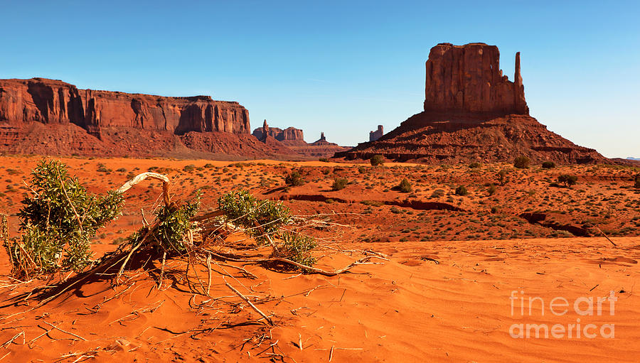 America Photograph - Monument Valley  by Jane Rix