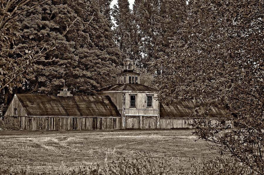 Barn Photograph - 5 Star Barn Monochrome by Steve Harrington