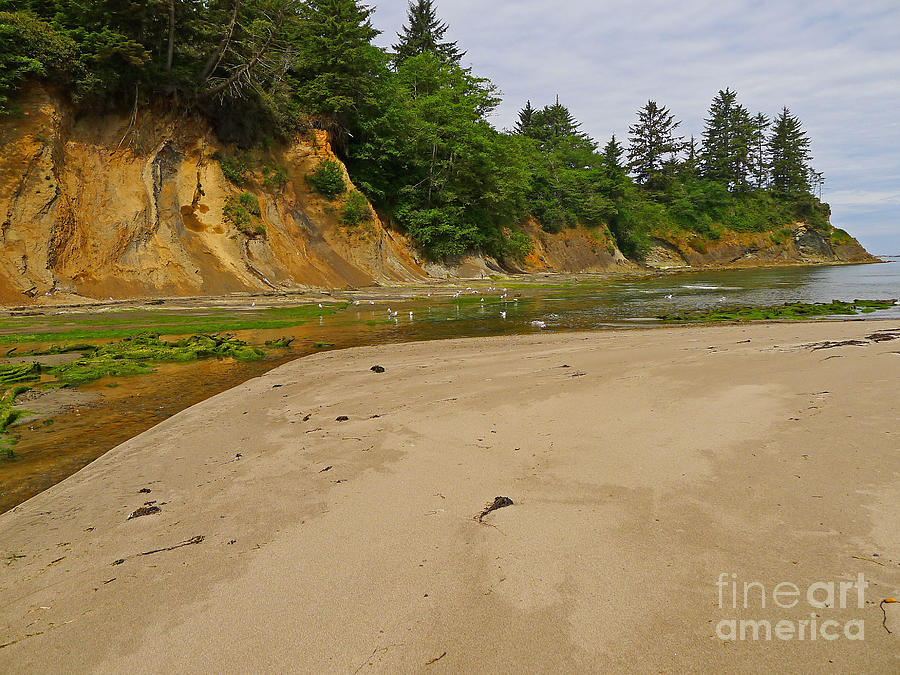 Sunset Bay State Park Photograph - Sunset Bay State Park by Gail Peters