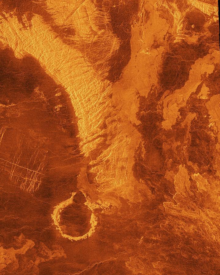 Surface Of Venus Photograph by Nasa/jpl