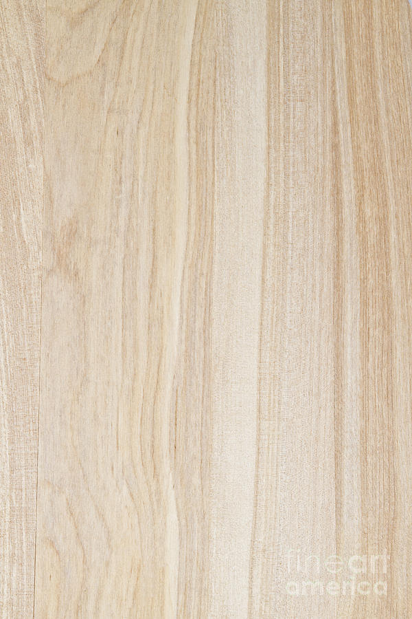 Texture Of Wood Background Photograph