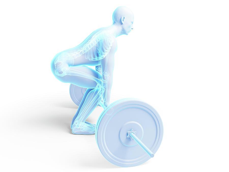 Artwork Photograph - Weight Training Posture by Sebastian Kaulitzki