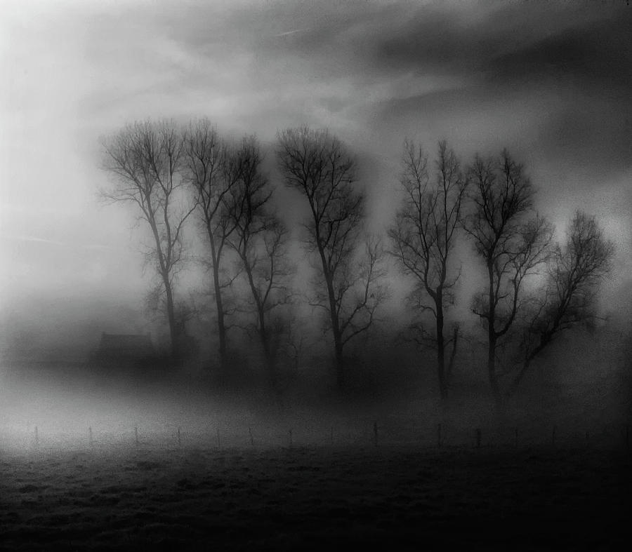 Landscape Photograph - 50 Shades Of Fog by Yvette Depaepe