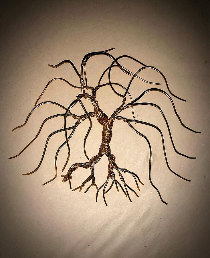 Bonsai Tree Photograph   #51 My First Wild Wire Wall Art Tree Sculpture By  Ricks