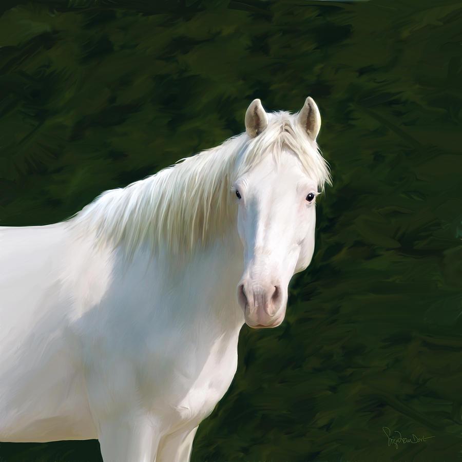 Horse Digital Art - 52. Blanca criollo by Sigrid Van Dort