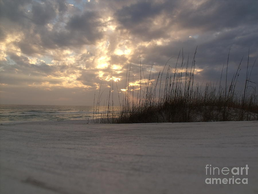 Beach Photograph - Alone In Heaven Again by Craig Calabrese
