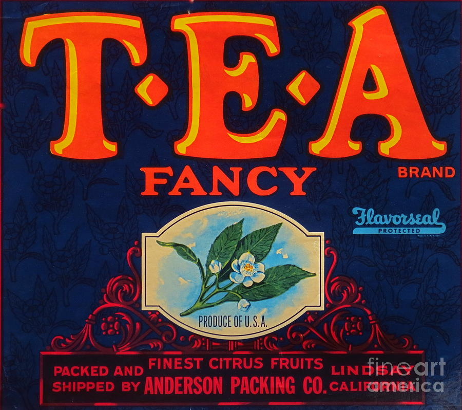 Antique Food Packaging Label. Photograph by Robert Birkenes