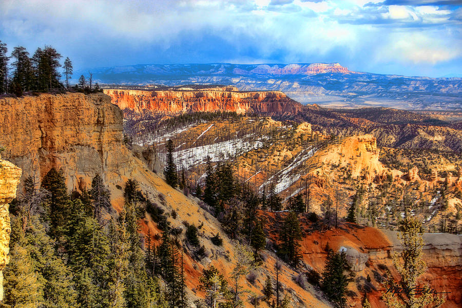 Canyon Bryce Photograph - Bryce Canyon  by Marti Green