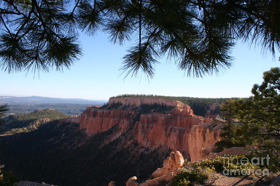 Canyon Photograph - Bryce Canyon Overlook by Christiane Schulze Art And Photography