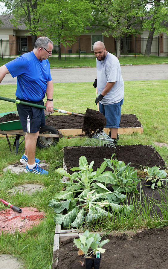 Community Gardening Photograph By Jim West