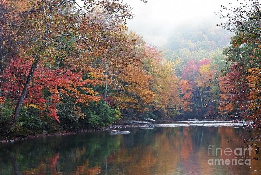 Monongahela National Forest Photograph - Fall Color Williams River by Thomas R Fletcher