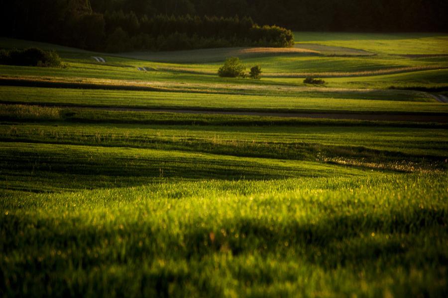 Landscape Photograph - Landscape 6 by Anna Gora