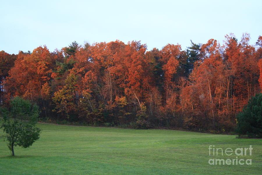 Fall Landscape Photograph - Landscape by Arelys Jimenez