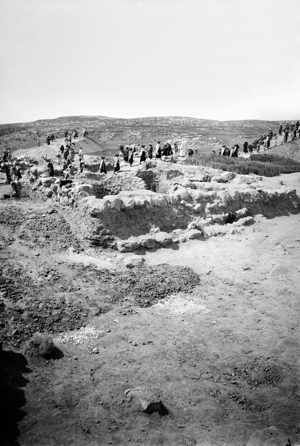 1931 Photograph - Palestine Beit Shemesh by Granger