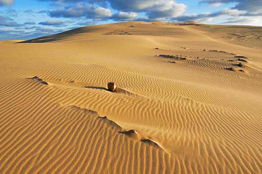 один песчаные гряды картинка мастерству специалистов