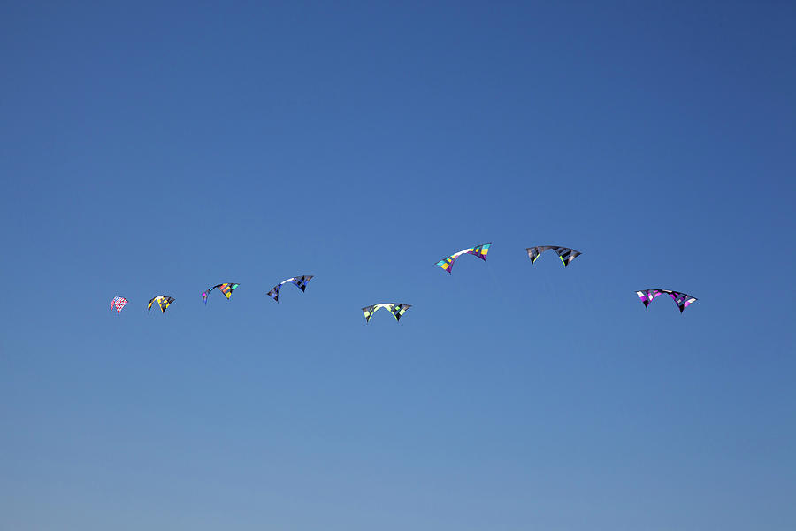 Beach Photograph - Wa, Long Beach, International Kite by Jamie and Judy Wild