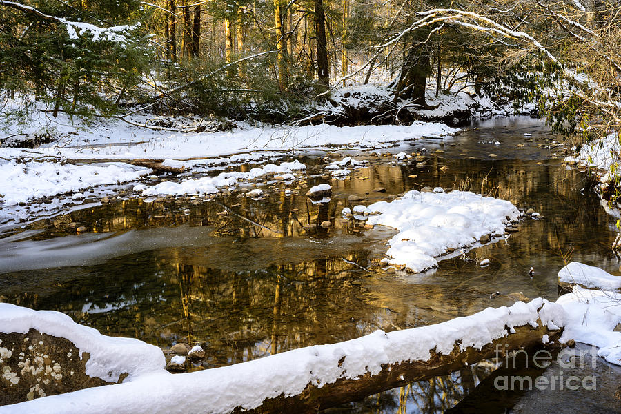 Cranberry River Photograph - Winter Along Cranberry River by Thomas R Fletcher