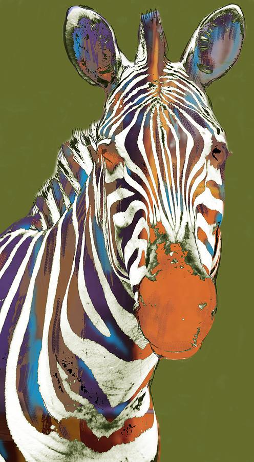 Portraits Drawing - Zebra - Stylised Drawing Art Poster by Kim Wang