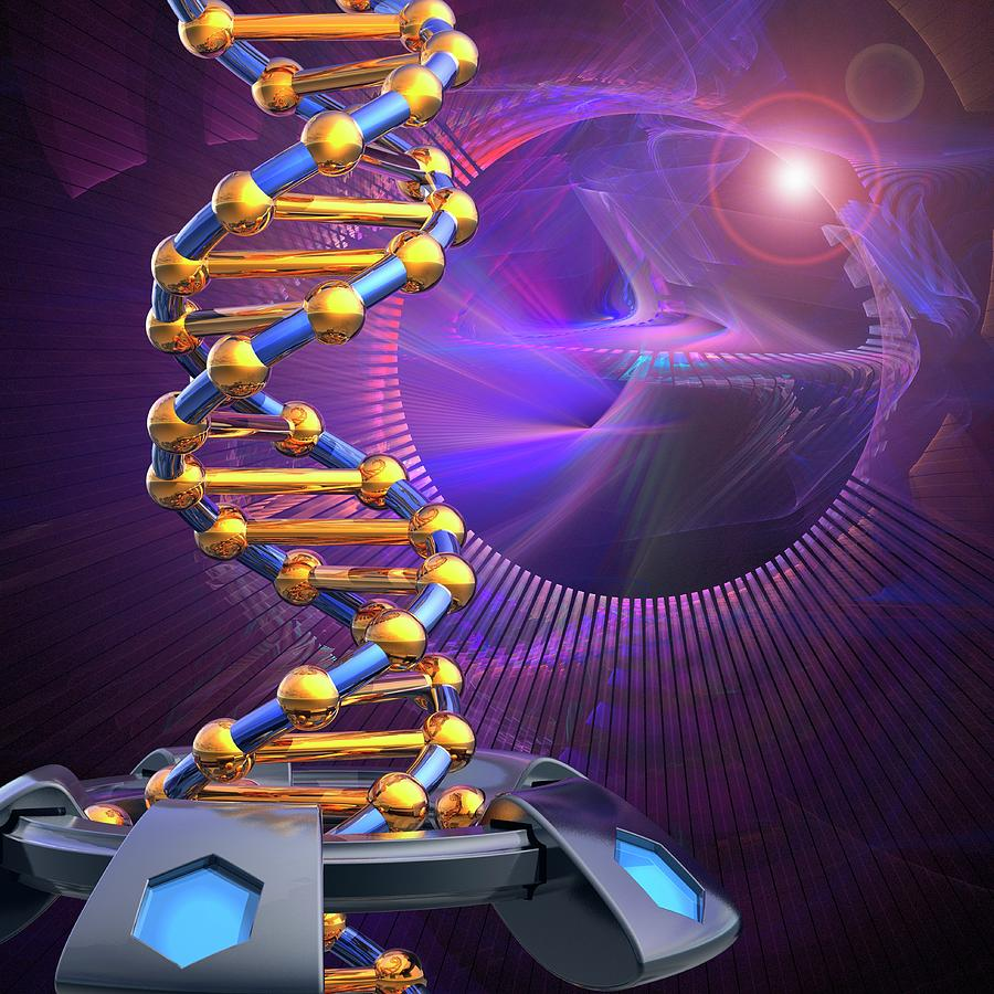 Dna Molecule Photograph By Laguna Design Science Photo Library
