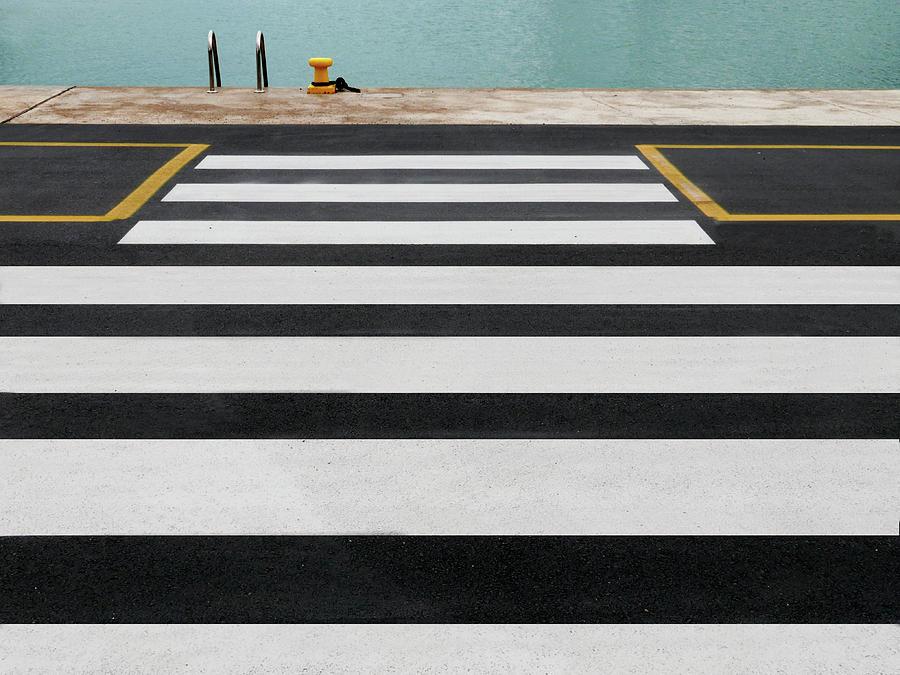 Zebra Photograph - 6/16 by Paolo Luxardo
